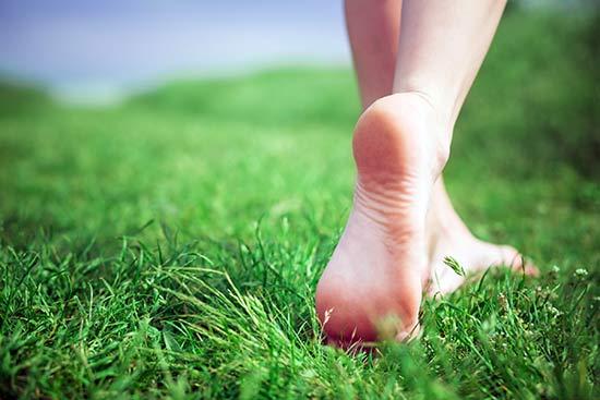 feet-in-grass-lawn (550x367, 187Kb)