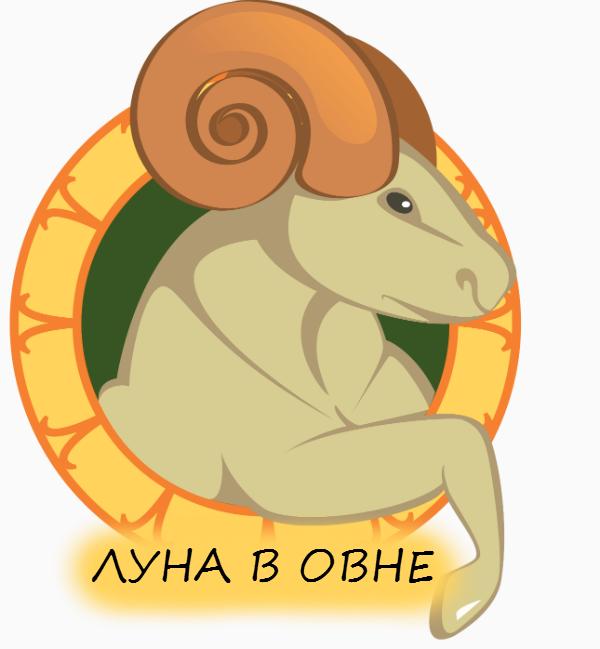 5174086_lyna_v_ovne (600x649, 115Kb)