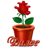 цв в горшке_S (96x96, 9Kb)