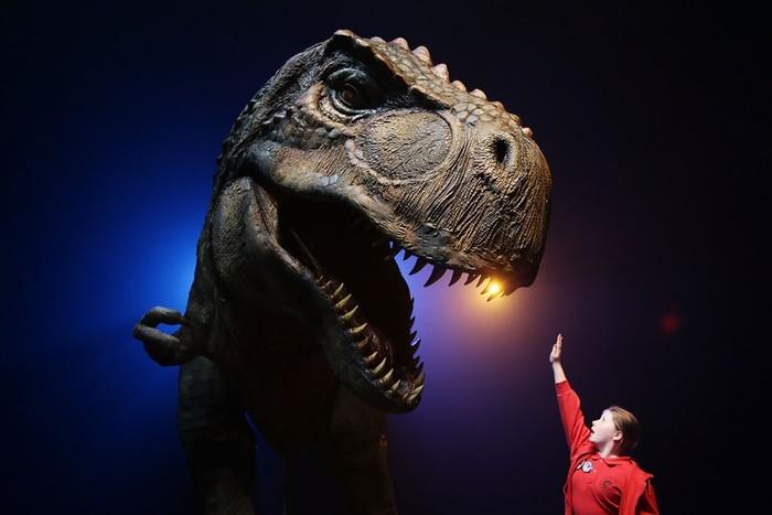 Странные загадки Тираннозавра Рекса