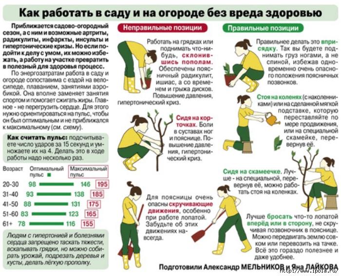 "alt=""Как уберечься от радикулита?""/2835299_Kak_yberechsya_ot_radikylita (700x568, 345Kb)"