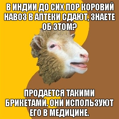 Овца-мракобес расскажет всё о современной науке