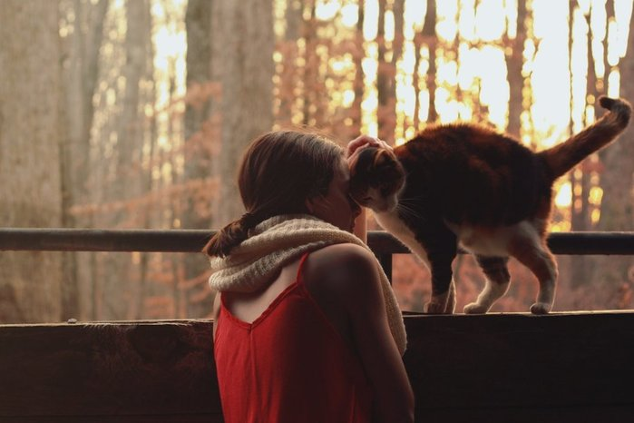 mood-girl-cat-scarf-jacket-red-nature-tree-sun-background-wallpaper (1) (700x466, 47Kb)