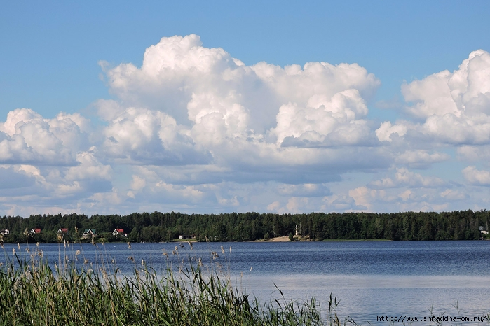 июль, Ленинградская область (2) (700x466, 254Kb)