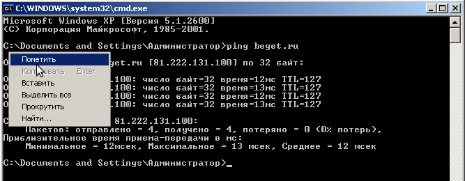 Как сделать пинг и трассировку в OC Windows