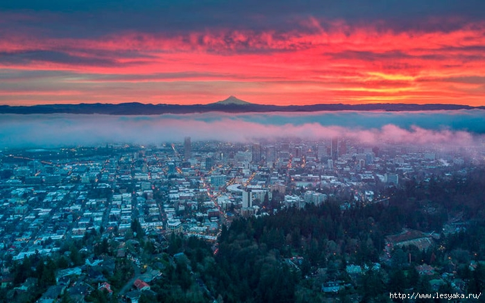 portland-oregon (700x437, 250Kb)