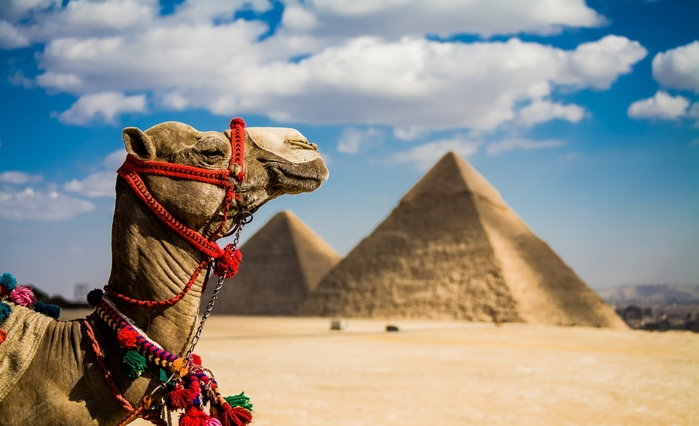 3085196_egypt (700x426, 188Kb)