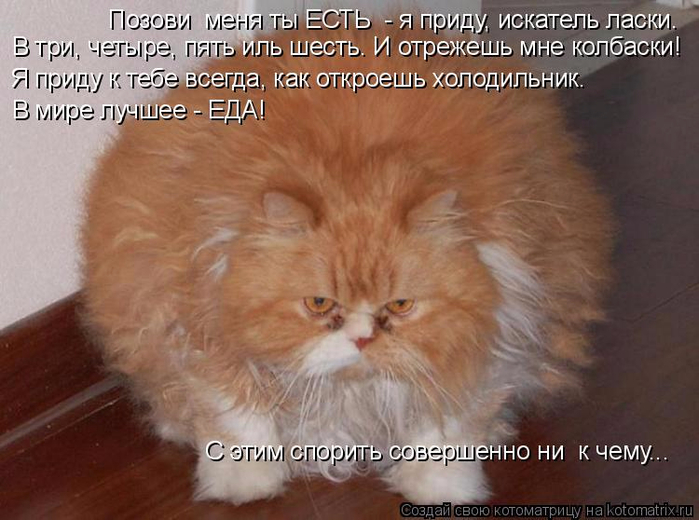 kotomatritsa_7G (700x520, 334Kb)