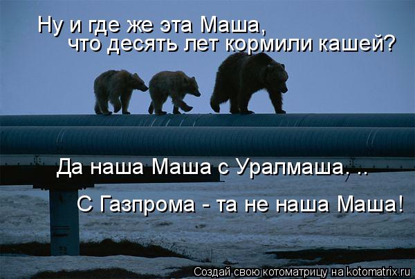 kotomatritsa_p (600x404, 203Kb)