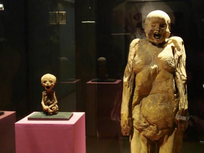 Как египтяне научились сохранять мумии?