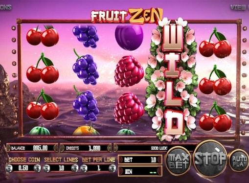 5. FRUIT ZEN (509x374, 233Kb)