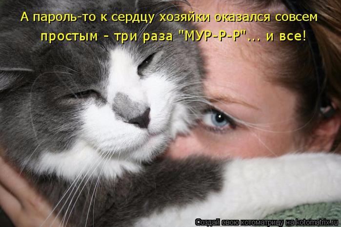 kotomatritsa_U (700x466, 303Kb)