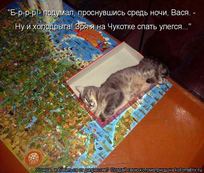 kotomatritsa_WF (700x592, 427Kb)