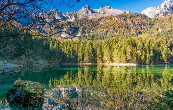 trentino-alto-adige-lago-di-tovel-ozero-italiia-les-gory (900x680, 158Kb)