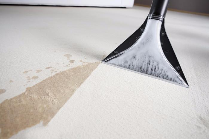 Чистка-ковра-моющим-пылесосом (700x466, 201Kb)