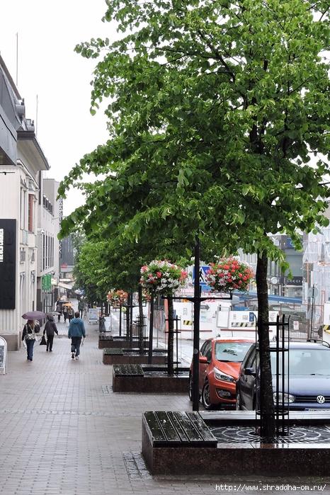 Финляндия, июль 2017 (3) (466x700, 366Kb)
