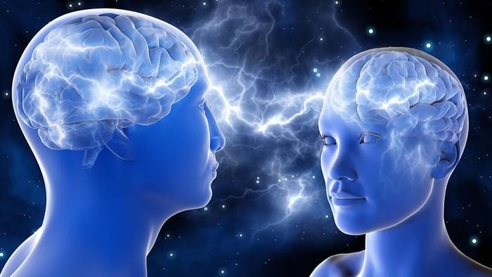 Мужчина и женщина равны в интеллектуальном плане