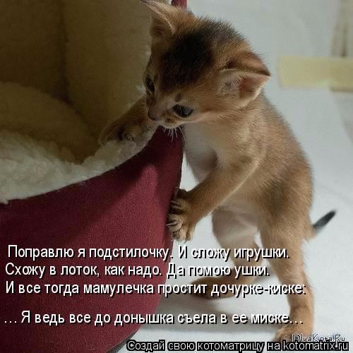 kotomatritsa_A (500x500, 198Kb)