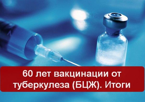 60 лет вакцинации от туберкулеза. Итоги (604x427, 43Kb)