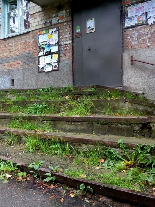зелёные ступеньки/683232_ekologicheskiy_podezd (525x700, 361Kb)