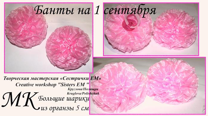 розовые на 1 сентября (700x393, 362Kb)