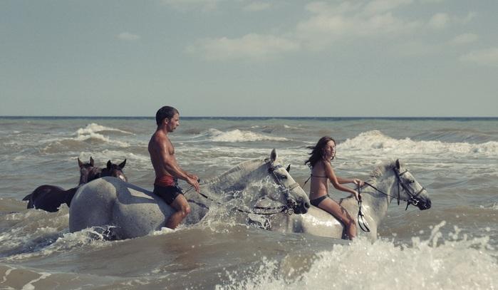 Как правильно купать лошадь?