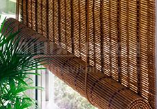 vid-bambukovye (230x160, 95Kb)