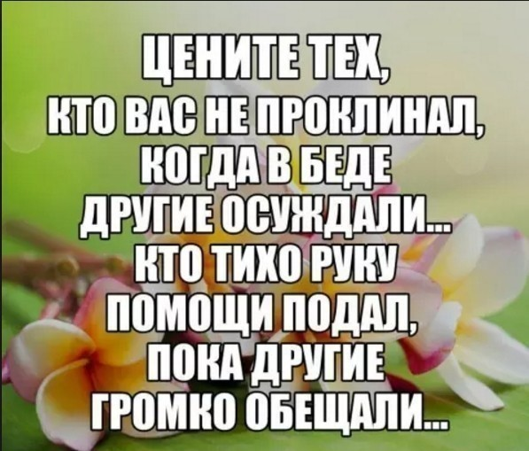 3416556_image_3 (597x509, 75Kb)