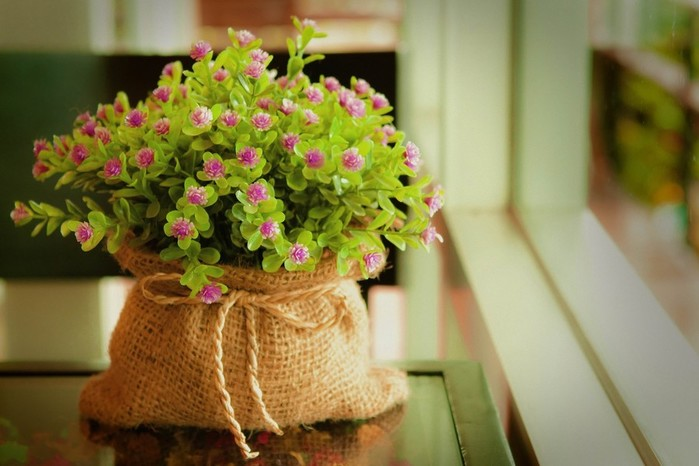 174185-bag-window-window_sill-flowers-purple_flowers-ropes (700x466, 71Kb)