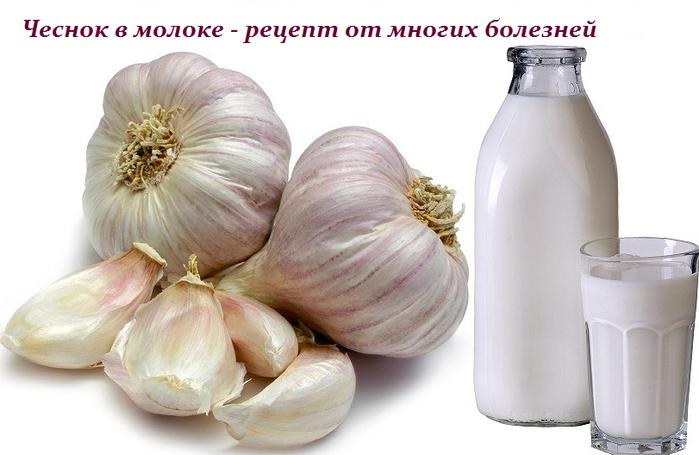 2749438_Chesnok_v_moloke__recept_ot_mnogih_boleznei (700x455, 355Kb)