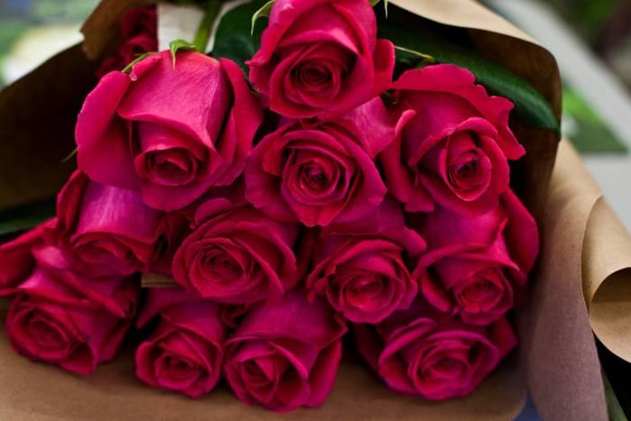 15tb-flowers01-master768 (700x467, 36Kb)