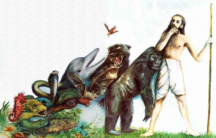 Чего не может объяснить дарвинизм