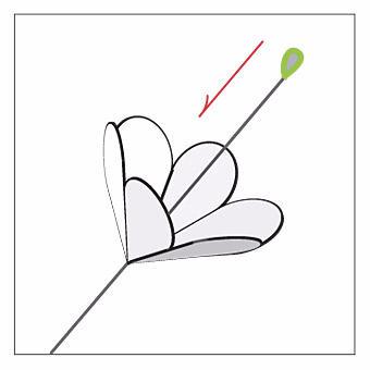 Делаем сами букет из бумажных цветов. Мастер-класс (8) (340x340, 30Kb)