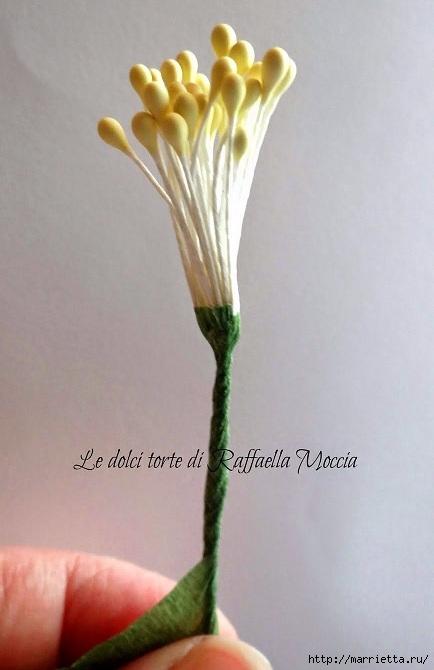İngiliz Roses modellenmesi üzerine Usta sınıfı (12) (434x670, 131KB)