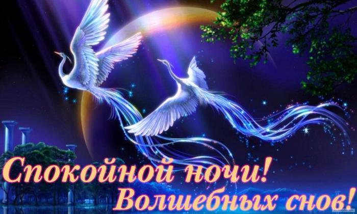 спокойной ночи волшебных снов (700x420, 51Kb)