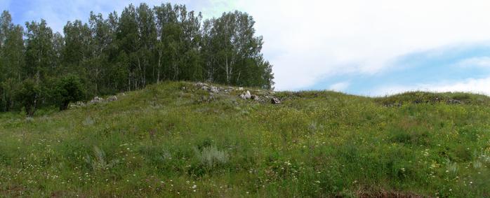 Каменистая степь (700x283, 300Kb)