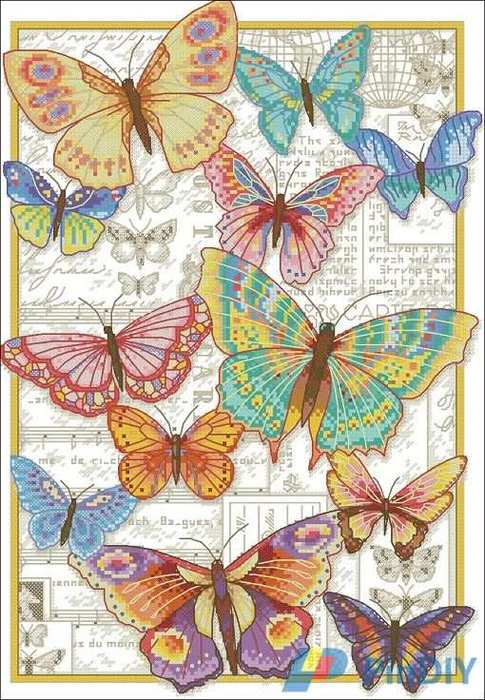 5630023_Dimensions_7035338__Butterfly_Beauty (485x700, 71Kb)