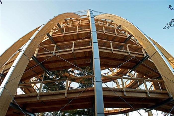 Парк Баварский лес   самая длинная прогулка по вершинам деревьев