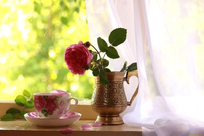 cvety-rozy-okno-chashka-800892 (700x468, 86Kb)