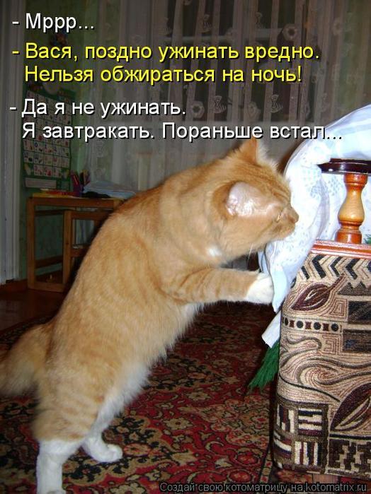 3509984_kotomatritsa_5 (524x700, 73Kb)