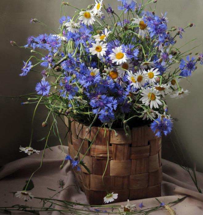 Натюрморт — ароматы цветов и приметы