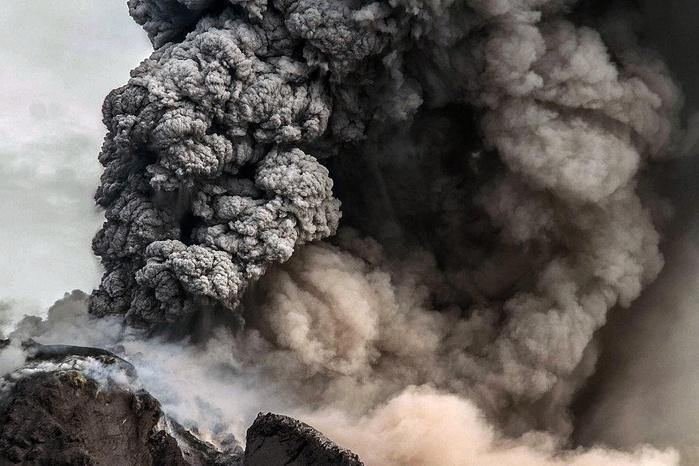 Ученые раскрыли причину самого большого в истории вымирания