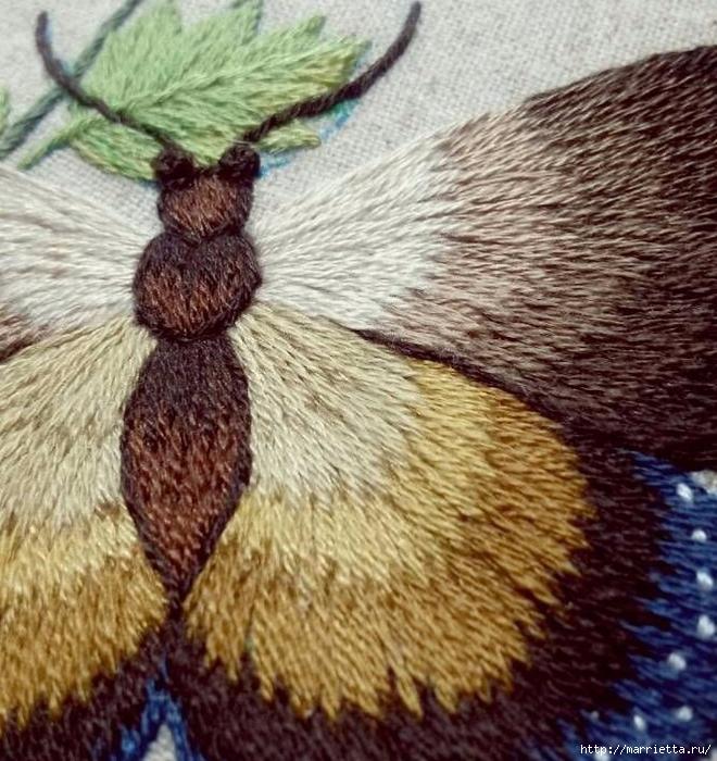 Вышивка гладью Бабочка (13) (660x700, 375Kb)