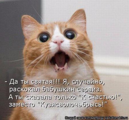 1311913722_kotomatrix_21 (450x417, 139Kb)