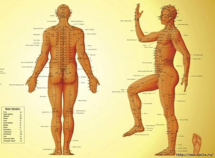 """alt=""""Как делать массаж биологически активных точек?""""/2835299_Kak_delat_massaj_biologicheski_aktivnih_tochek1 (700x515, 194Kb)"""