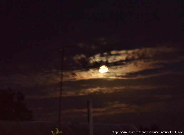 луна 7 августа 2017 011 (700x512, 199Kb)