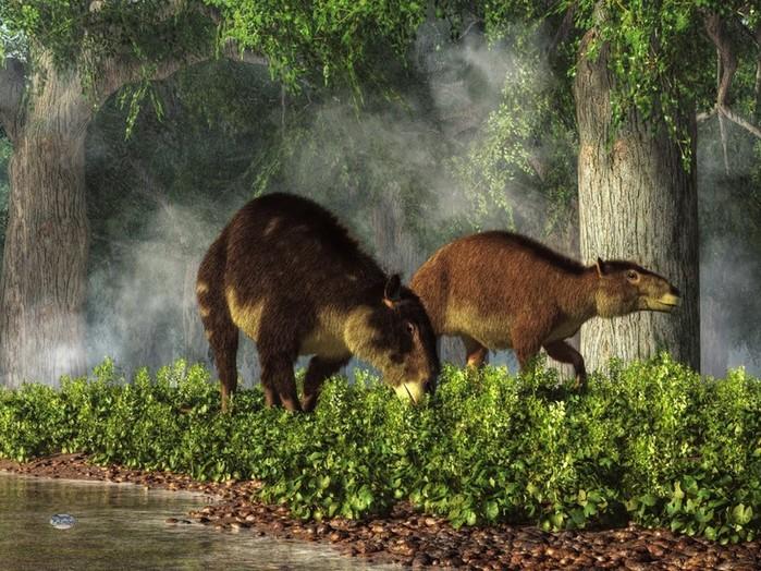 От какого животного произошла древняя лошадь