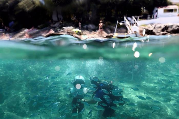 подводный парк в пуле хорватия 9 (700x466, 328Kb)