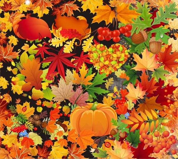 Осенние листья: клипарт на прозрачном фоне. 45 png.