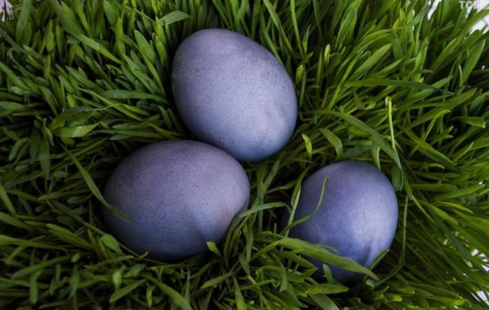 Крашенка (пасхальное яйцо)